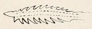 Microglanis zonatus