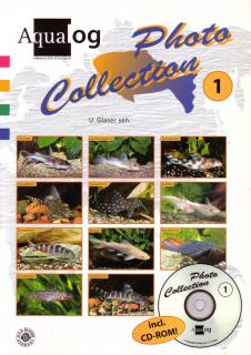 Aqualog Photo Collection 1, African Catfishes
