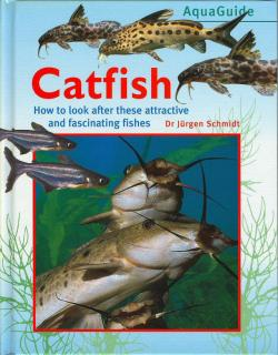 Aquaguide: Catfish
