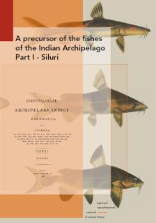 Precursor of the Fishes of the (East) Indian Archipelago - Part 1 Siluri