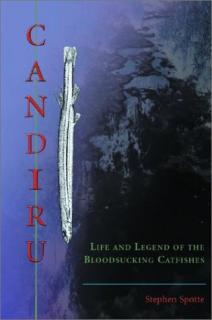 Candiru, Life and Legend of the Bloodsucking Catfishes