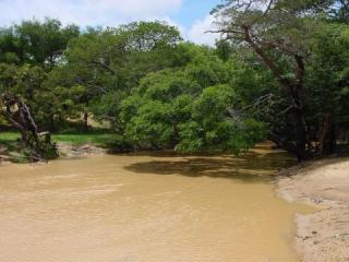 The Rio Espino in southern Guarico State, Venezuela is a typical white water river.