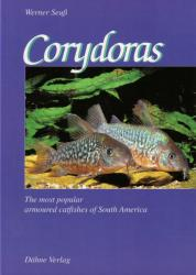 Corydoras, The most popular catfishes of South America