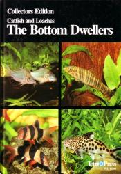 The Bottom Dwellers (Catfishes and Loaches)