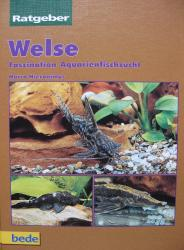Welse, Faszination Aquarienfischzucht