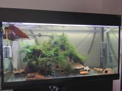 Big tank