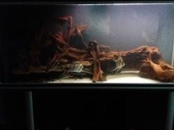 Aquatlantis Evasion 150