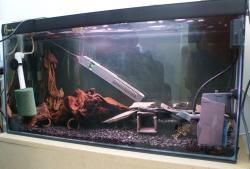 Breeding Tank