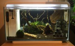 Superfish Home 25 Nano Tank